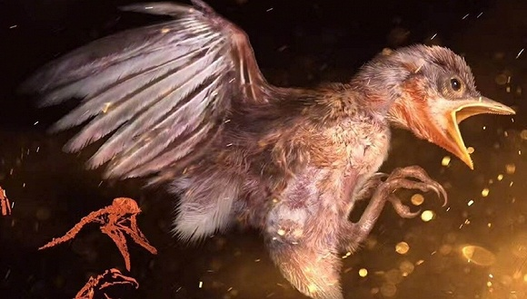 人类首次在琥珀中发现古雏鸟 距今9900万年与恐龙同时代(组图)