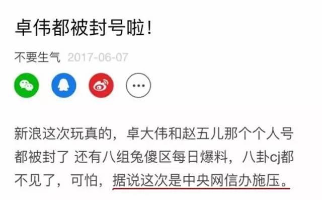 """卓伟赵五儿遭全网封杀,八卦号运营公司损失千万!"""""""