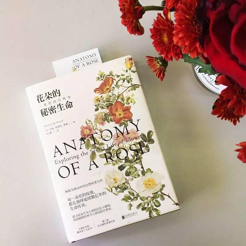 一本你翻开就能闻到花香的书