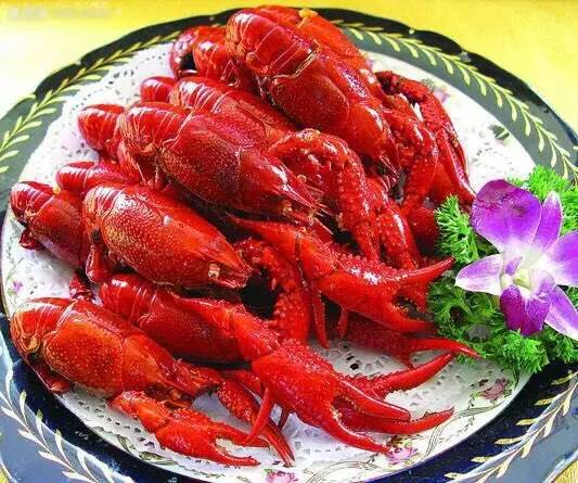 新宁龙虾部落老板真的有毛病 疯狂继续 龙虾烧烤宴 High夏音乐节 火爆来袭