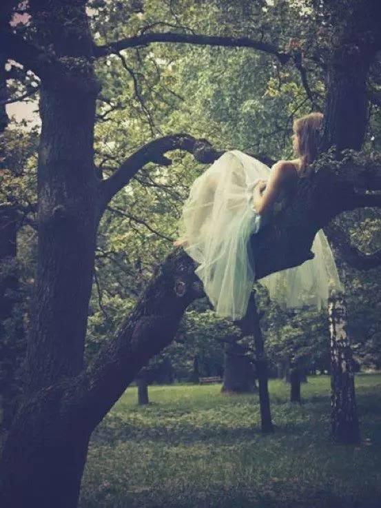 哲学心语:感动代替不了感情 ,念旧也回不到曾经。