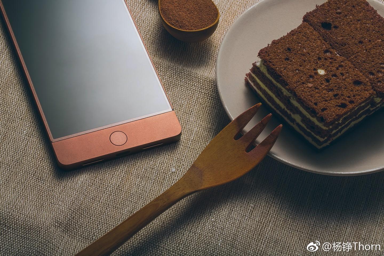 的手机 网友晒坚果Pro巧克力色真机图赏图片