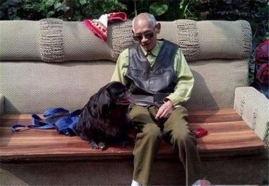 狗狗陪了老爷爷十几年,如今走不动了,老爷爷这样