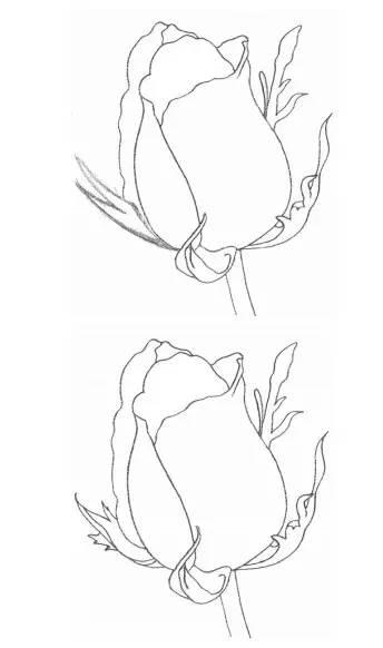 铅笔画 如何画一朵玫瑰花