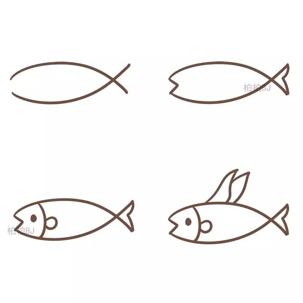 各种各样的鱼