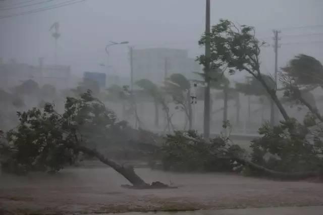 快报 2号台风明天登陆广东 广州沿海地区将有大雨到暴雨