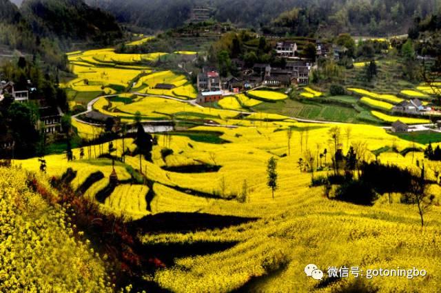 大堰镇位于奉化西南,毗邻国家aaaaa级风景旅游区溪口.