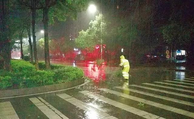 数人彻夜未眠 台风 苗柏 袭击惠州,带来这些影响