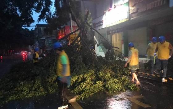 台风虽然破坏力巨大,但是也解除了连日以来惠州的高温天气,尽快