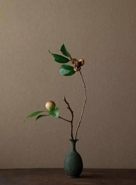 禅意意境   插花艺术图片