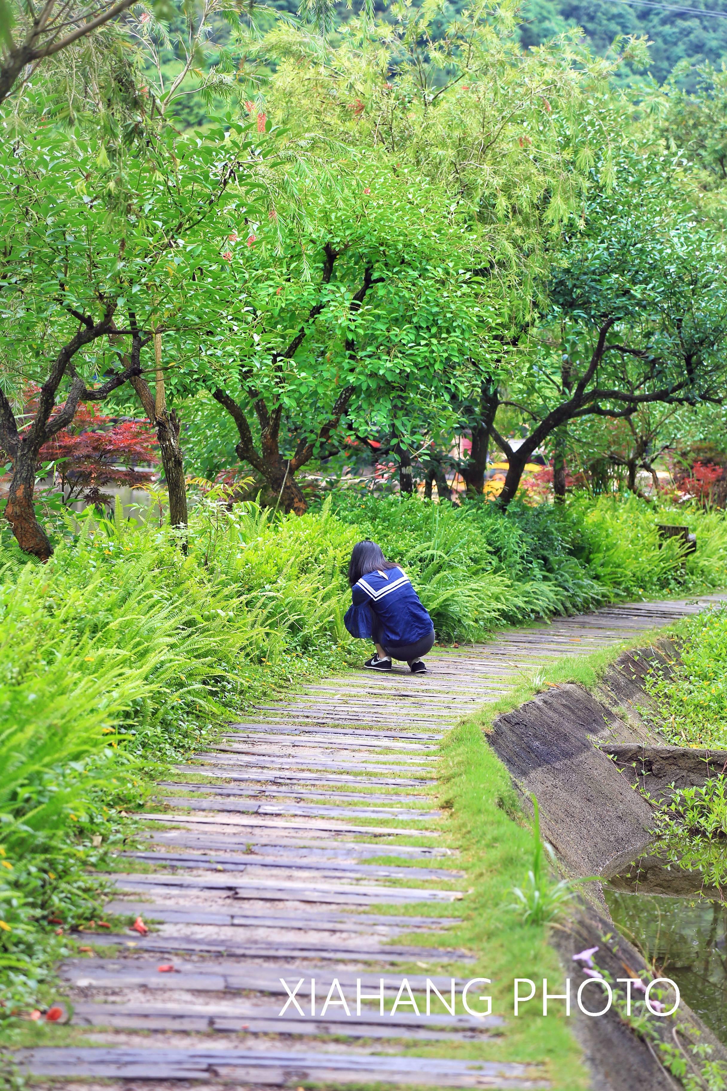 莆田的后花园,藏着九条龙,徐霞客还曾经踏足过