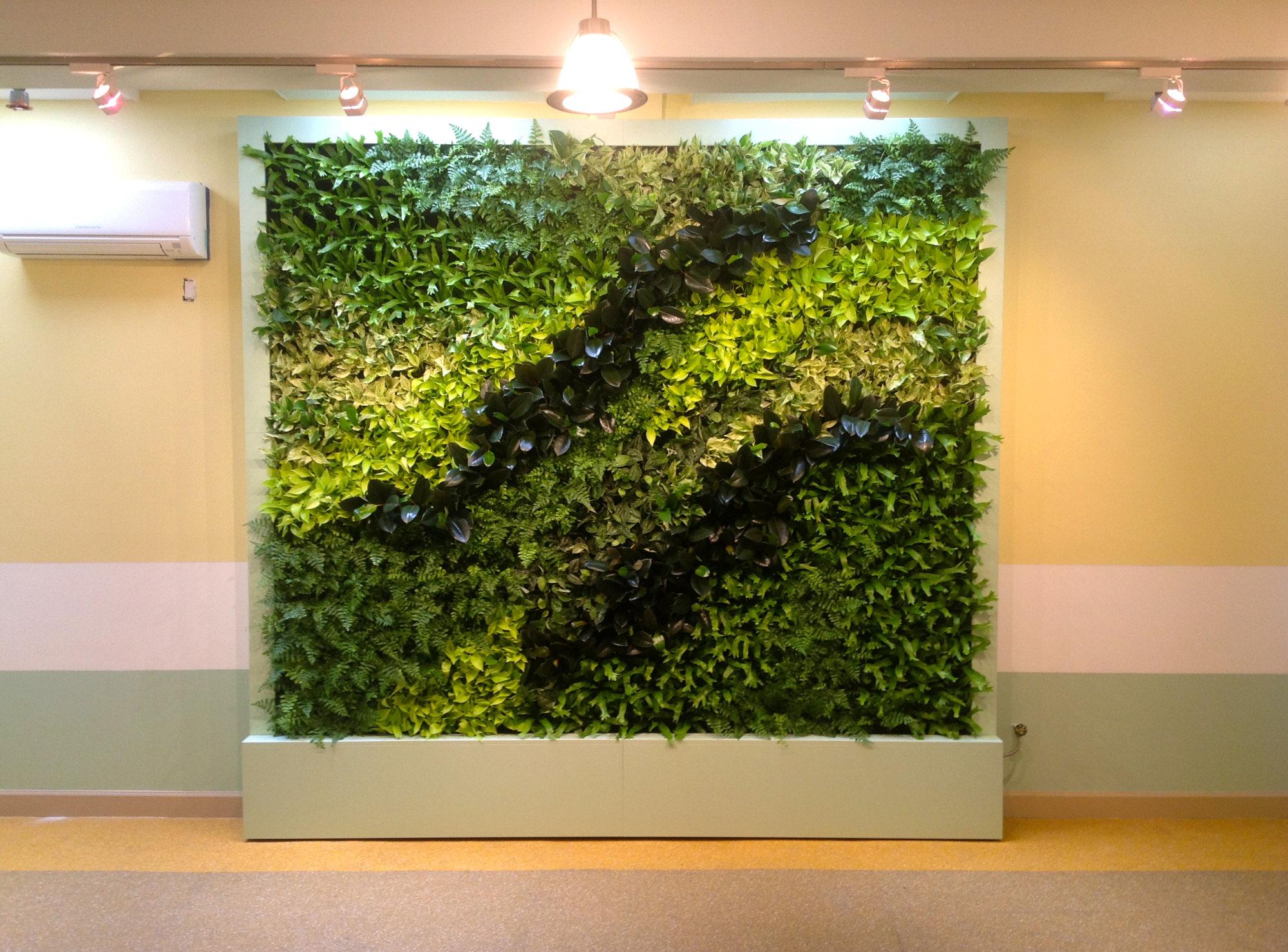 人造植物墙效果_人造植物墙_绿墙植物