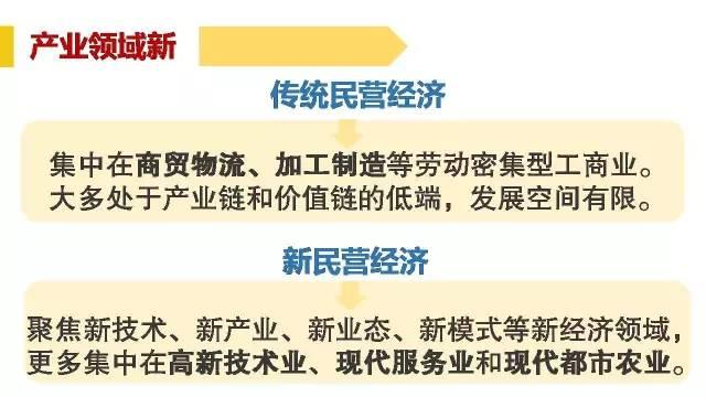 武汉 民营经济总量_武汉经济开发区发改局(2)