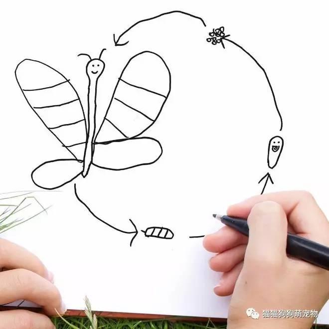 当这老爹把6岁儿子的简笔画p成现实版,这炸裂的画风