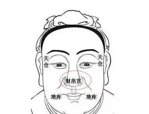 鼻头尖的女人面相学图 (第1页)   图说健康