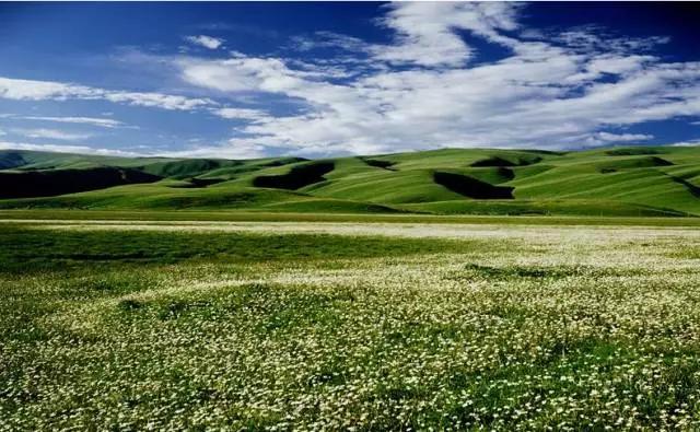 大美四川!进入六月全国最美的风景都被它承包了
