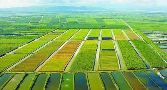 农村一二三产业融合发展如何实现1+1+1>3