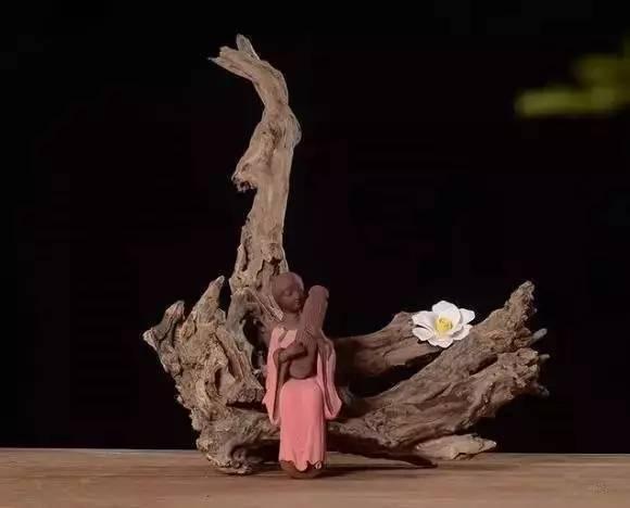 废弃的枯木树根中,藏着无限禅意