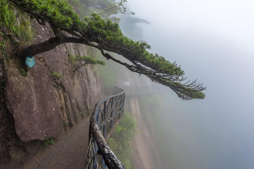 三清山有条全国独有的高空栈道,3000多米无一台阶