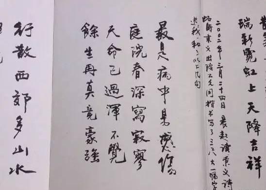 徐静蕾父亲书法作品 真是有其父必有其女-6岁女儿被父亲逼着学书法,