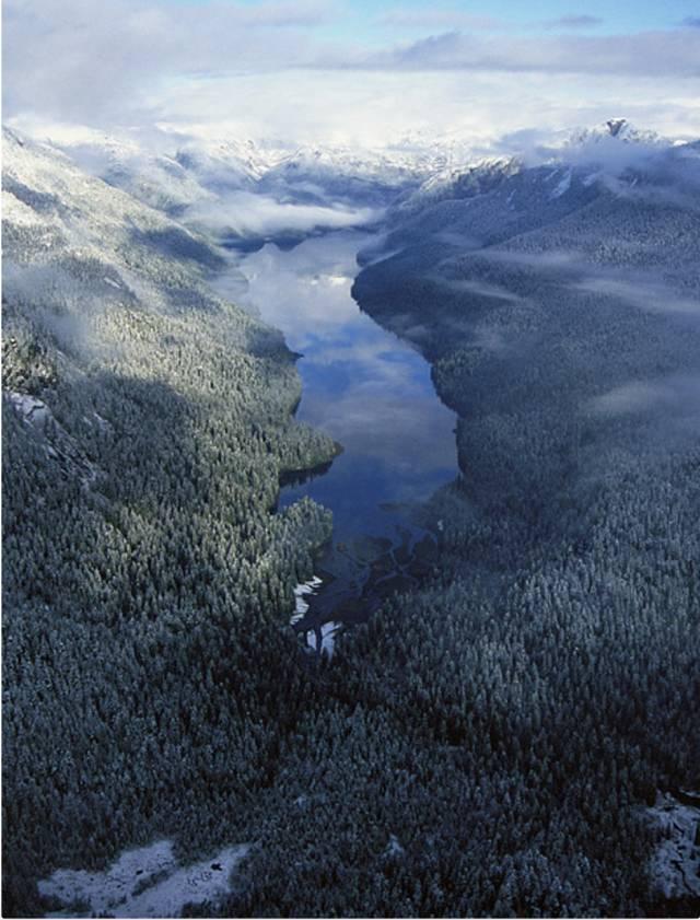 50八卦丨化作鸟的眼睛,才能看见阿拉斯加的原野