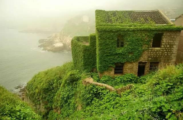 中国有一个小岛,被遗弃了20年,却美成了天堂!
