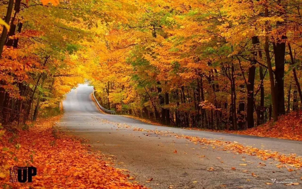 """虽然加拿大各处的枫叶秋景都很美,但是其中最不可错过的就是著名的""""图片"""