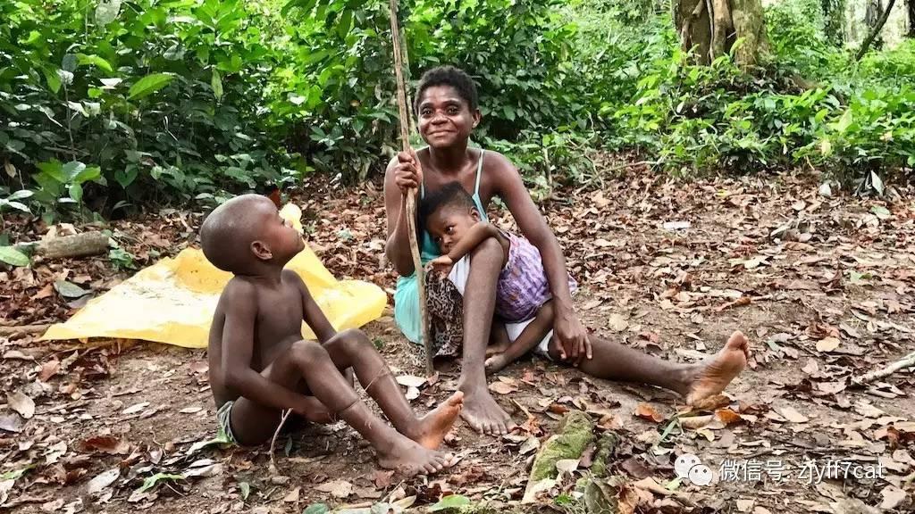"""生活在丛林深处的""""小矮人"""",8岁就能过性生活?"""