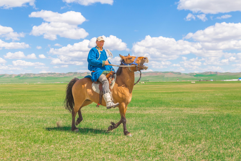 在这独一无二的草原宫殿里,尽享蒙古贵族宫廷生活