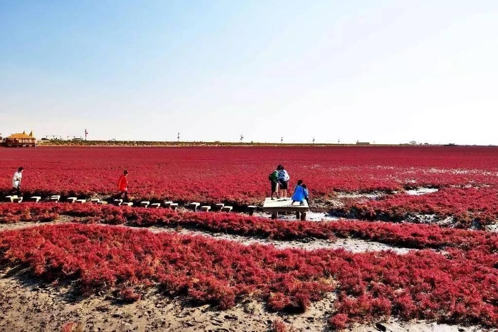 鸭绿江,长白山,望天鹅,葫芦岛,盘锦红海滩