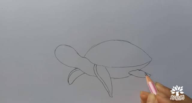 夏日海洋绘画大全,带你创建画笔上的水族馆