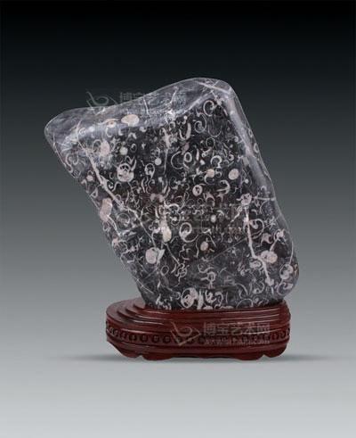 海洋生物化石,编号:0040成交价:hkd2,137,500拍卖