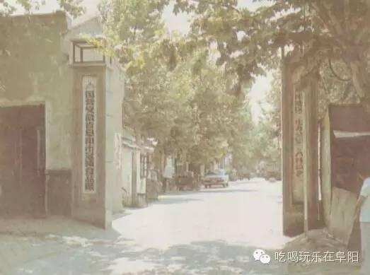 阜南县三塔镇人口_阜南县地图