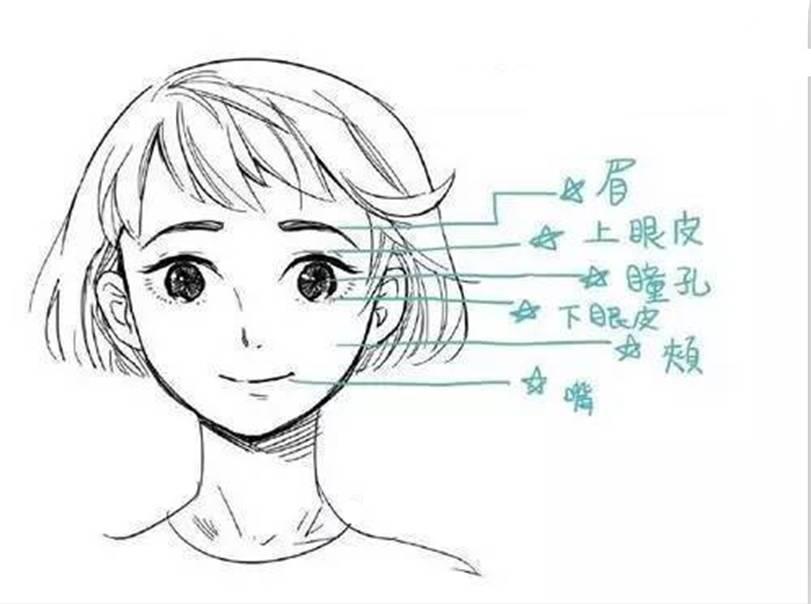 动漫 简笔画 卡通 漫画 手绘 头像 线稿 811_604