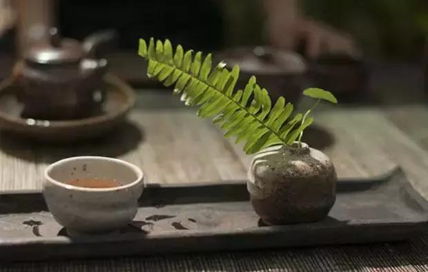 品茶|认真过好平凡生活中的细节