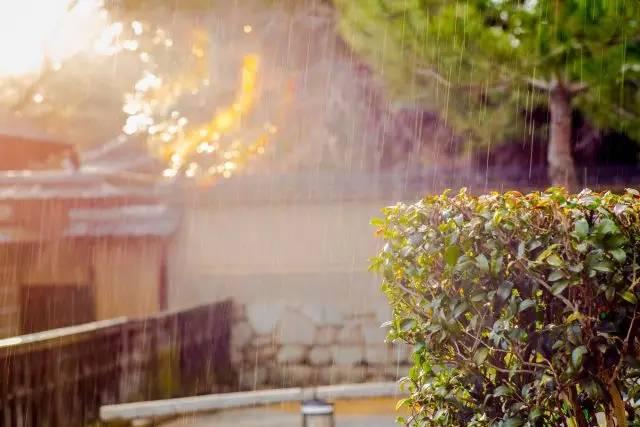 雨唯美伤感意境雨景图片