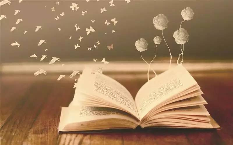 一本翻开的书-12本人文好书,帮你读懂复杂的世界 最美书店周