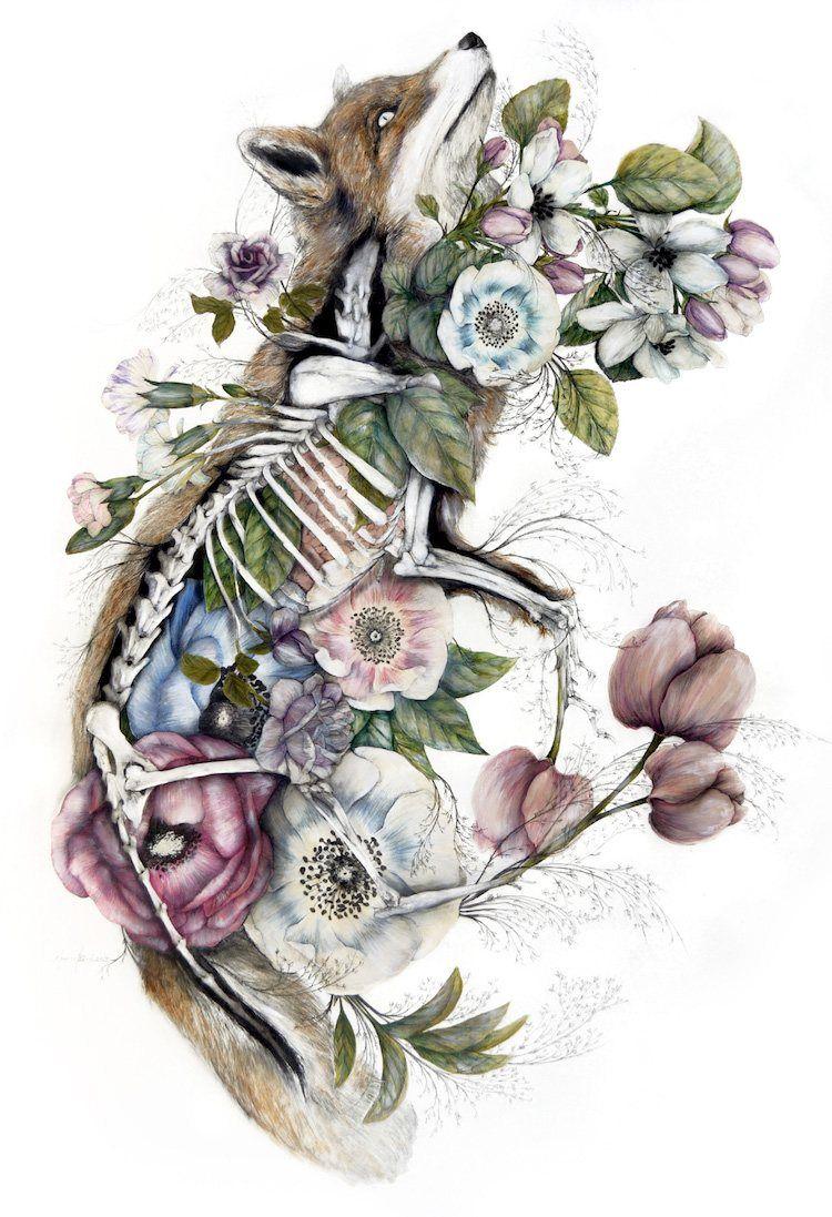 手绘| 将动物解剖图与花卉结合,意想不到的精美呀!