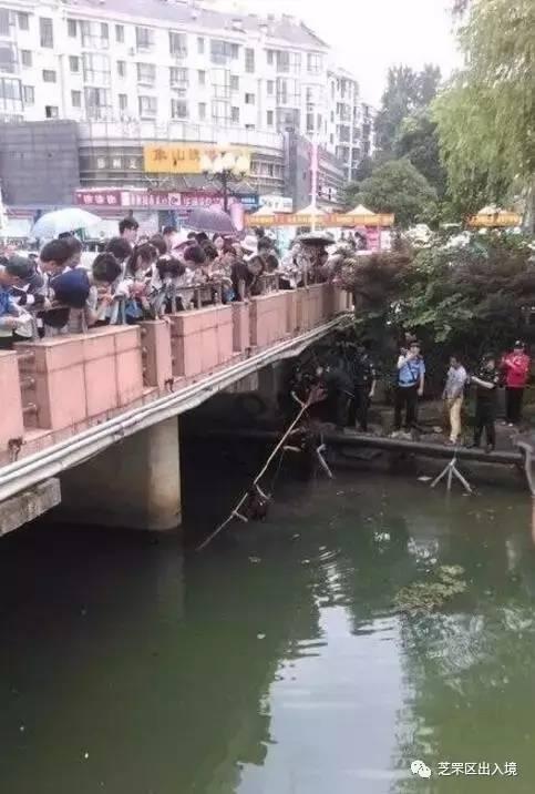 准考证掉河里南京江浦高级中学桥边的体育,有高中的准考证掉河里了及格考点考生标准图片