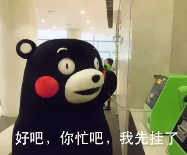 搞笑 正文  关注后会提高笑点和颜值 , via熊本熊表情包 (版权说明图片