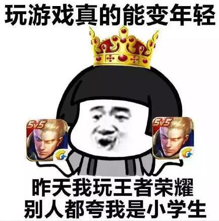 王者荣耀斗图表情包第171期 你负责一打五我负责躺图片
