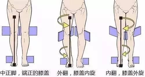不是真的腿短,纠正 假胯宽 拥有逆天大长腿