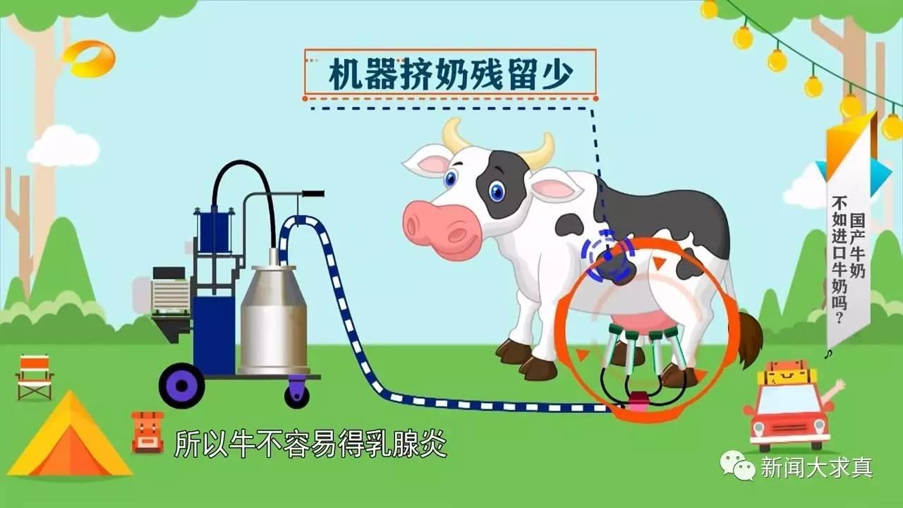 挤出的牛奶更是需要急速冷藏,然后送到加工厂经过巴氏杀菌,再进行罐装图片