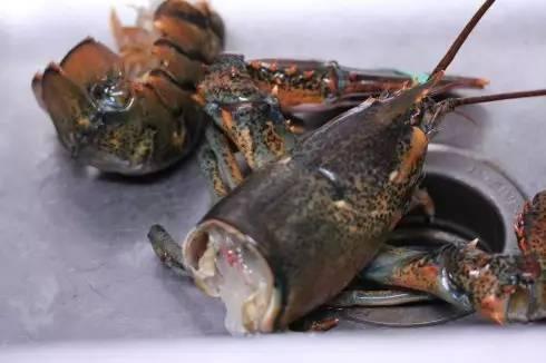 天天嚷着吃小龙虾,你有没有吃过小龙虾他哥