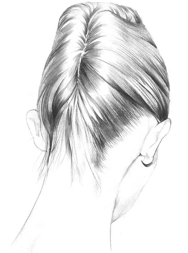教程  教你手绘女神发型