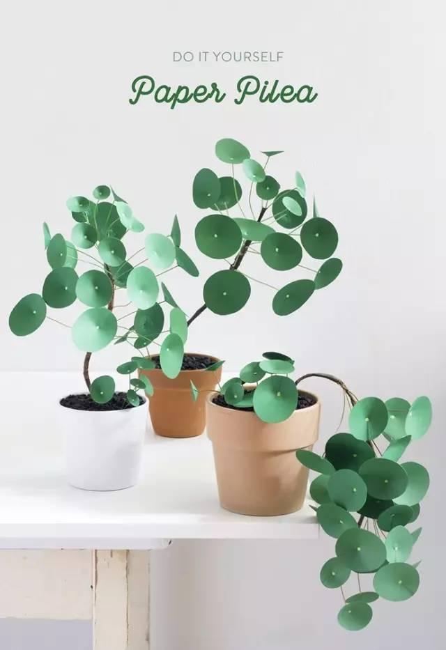 diy纸制绿植盆栽,给你带来夏日一抹绿意,赶快学起来吧