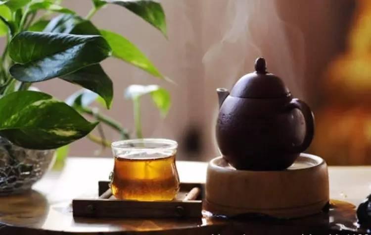 哪种茶去口臭效果好