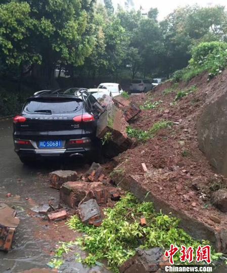 四川自贡遭遇强降雨 多路段塌方积水部分农田被淹(组图)