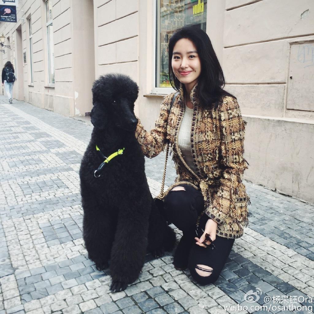 杨采钰承认与刘亦菲干爹恋情 私照曝光神似神仙姐姐 组图