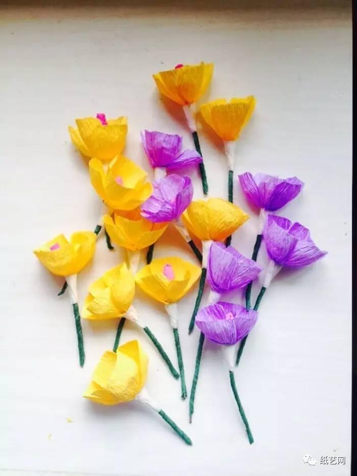 皱纹纸几可乱,真永不凋零的鲜花!